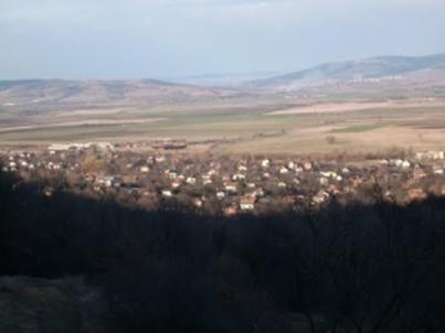 klenovik